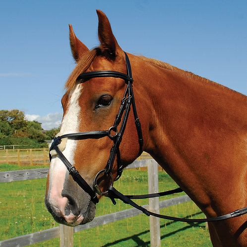 Heritage English Leather Bridle With Mexican Grackle Noseband