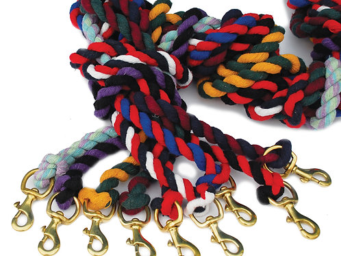 Twin Coloured Lead Rope