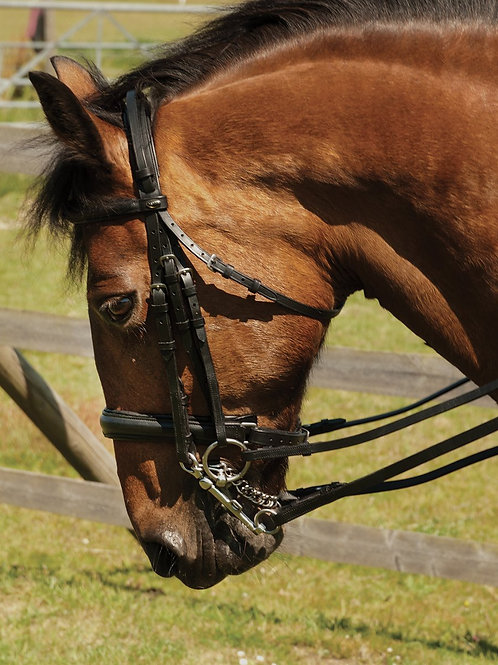 English Leather Double Comfort Bridle