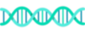 dna-line-horizontal.png