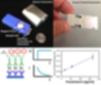 Electrochemical sensors for  quanttitati