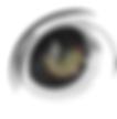 Leopard eye lens v5.png