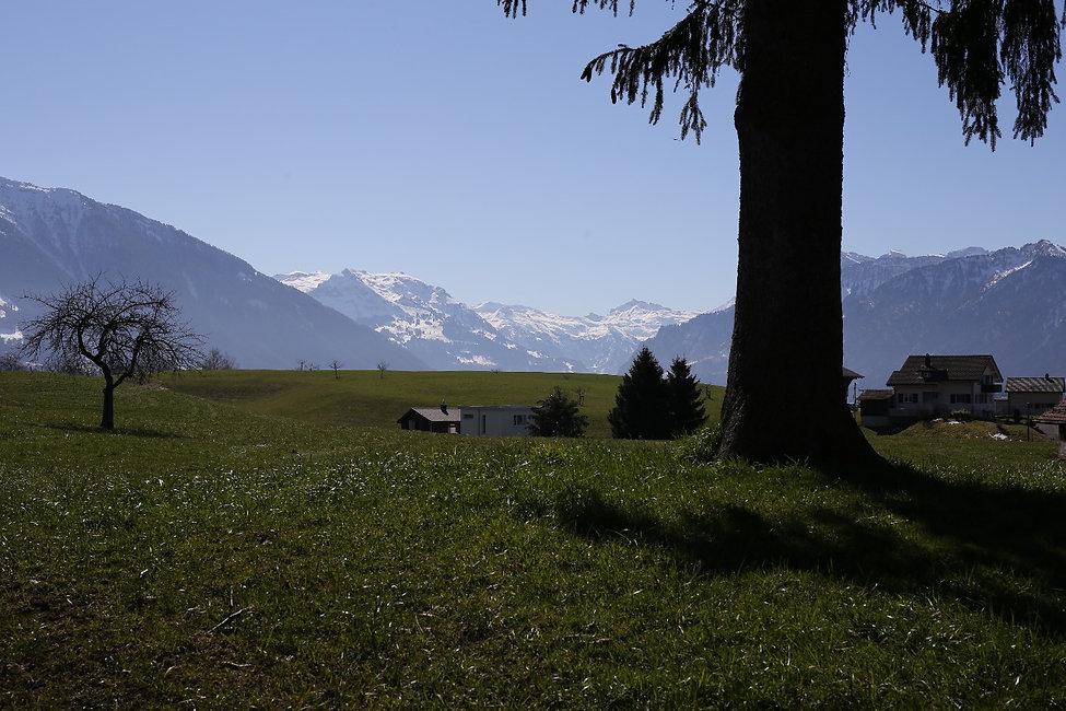 Aussicht-Gommiswald.jpg