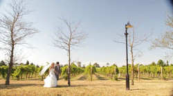 Blackbird Wedding