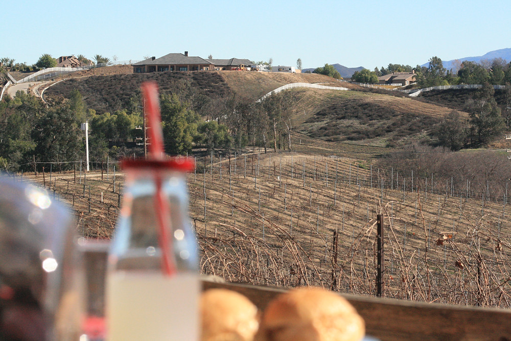 Picnic For Two (Hart Winery)
