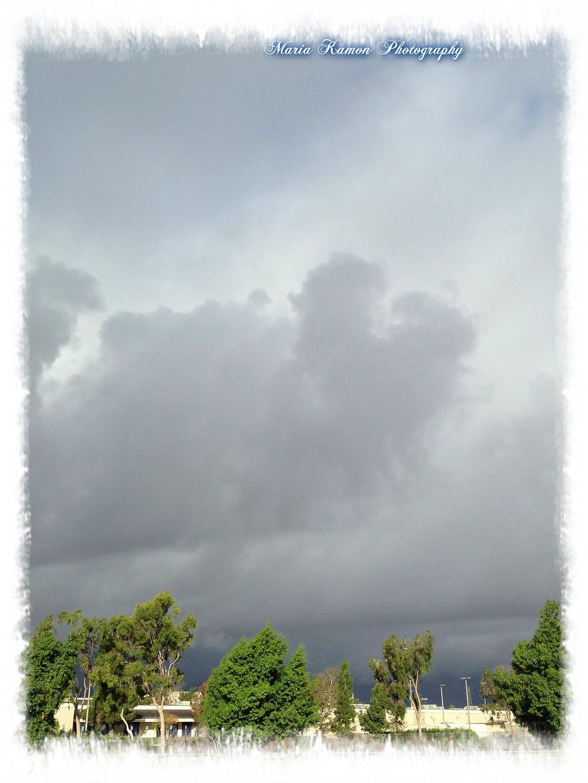 StormNorthBlog.jpg