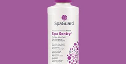 SpaGuard Spa Sentry