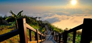 7 Ways to Advance Purpose in a Turbulent World