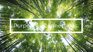 Supporting the Health of People and Planet | Purposeful Connections