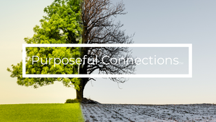 Innovations in Climate Action | Purposeful Connections
