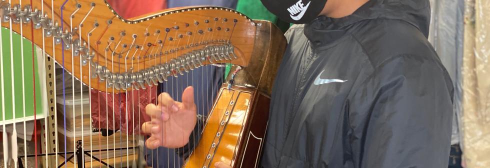 harp class 10.jpeg