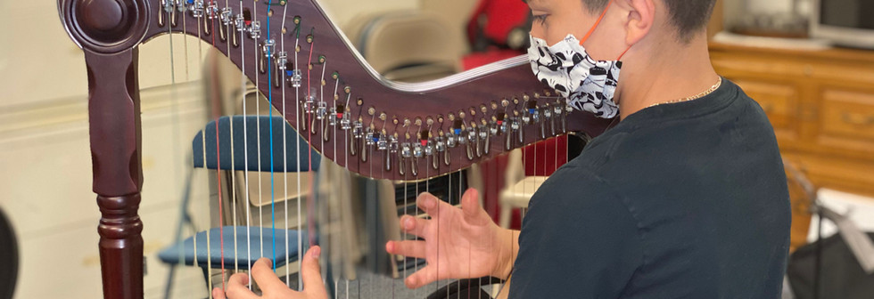 harp class 9.jpeg
