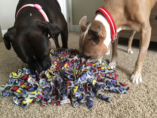 Snuffle Mat for Canine Enrichment