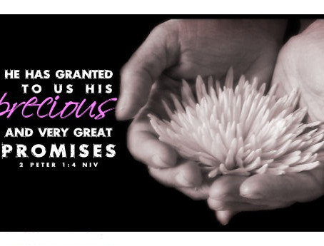 Standing on God's Promises. Part 1