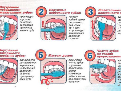 Как правильно и сколько раз в день нужно чистить зубы взрослым и какой зубной пастой