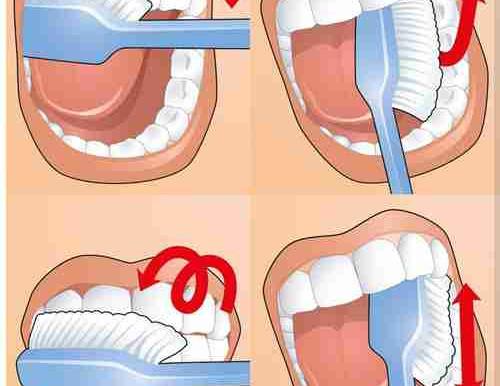 Как тщательно и сколько минут взрослым нужно чистить зубы по времени: схема движения щеткой