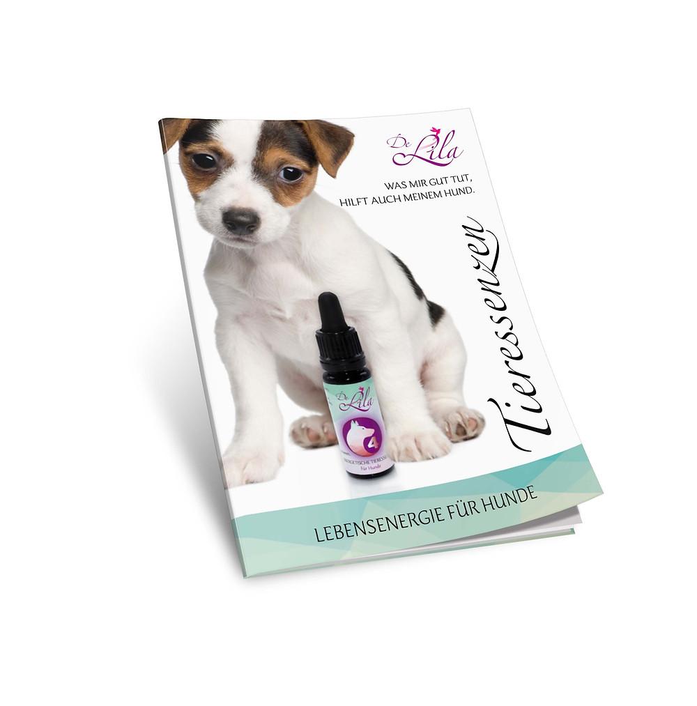 Broschüre für Hunde Tropfen
