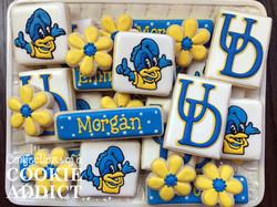 University of Delaware Cookies