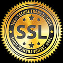 ssl-icon-png-16.jpg