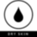 Dry Skin - vegan moisturizer