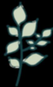 design_element02.png