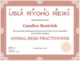 Animal Reiki Certification.jpg