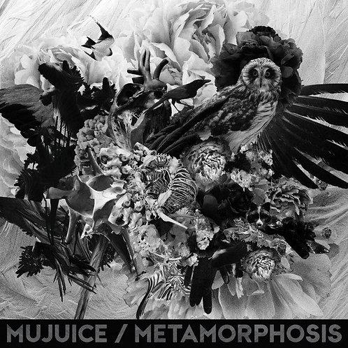 Диск Mujuice - Metamorphosis