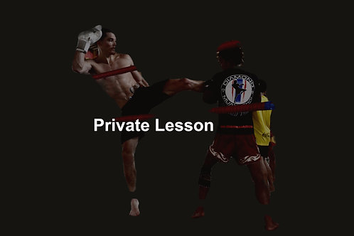 4 x Private Muay Thai/ Monthly