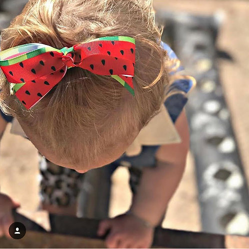 Watermelon Swagger Bows