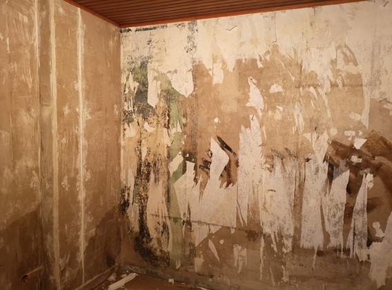 Wandvorbereitung Hamsch.jpg