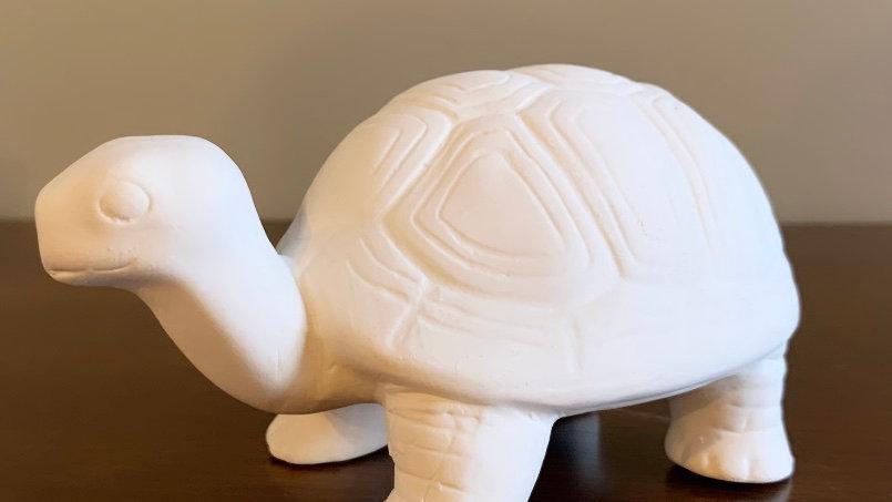 Standing Turtle