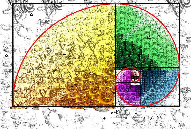 9.- Fibonacci 81X120 cms.jpg