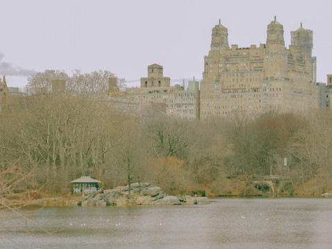 Central Park, 2013.