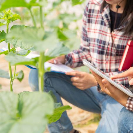 O que é gestão rural e porque aplicar em sua propriedade