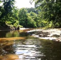 Creek at High Cotton