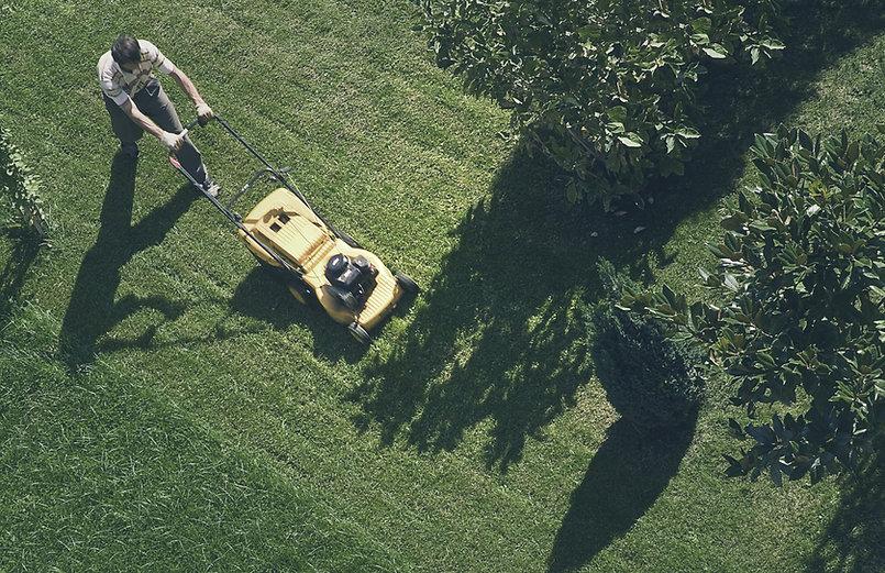 homme tond la pelouse