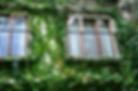 mint cottage, ivy, shepherds corner guest house, johannesurg venue business leisure, guest house bryanston, accommodation sandton, bnb bryanston, places to stay in bryanston, accommodation sandton, guest house sandton, best safe accommodation johannesburg, boutique guest house sandton bryanston, free wifi accommodation johannesburg, bnb entrance, leaf motif, tranquil stay, safe lodging,