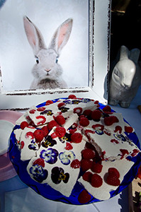 Some Bunny is Turning One-109.jpg