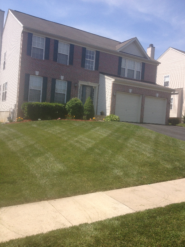 Bel Air Lawn Care