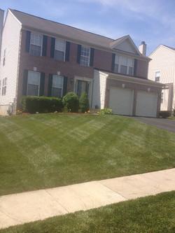 Bel Air Lawn Care