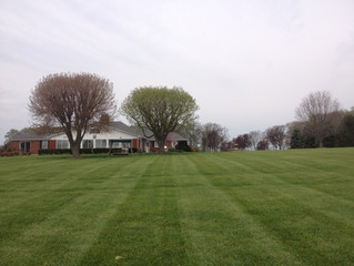 New Mowing Customers Receive One Month Free
