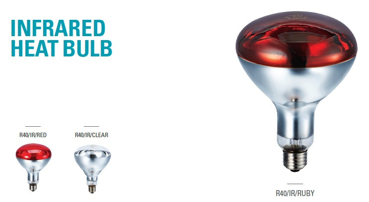 Infrared Heat Bulb (1).jpg