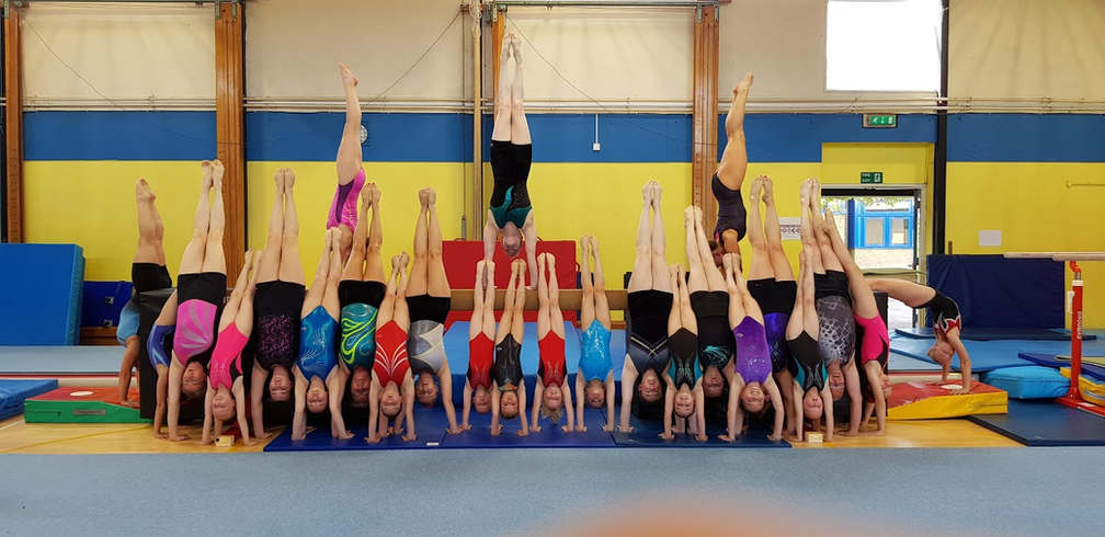 National Handstand Day