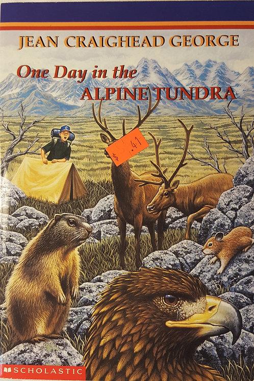 One Day in Alpine Tundra