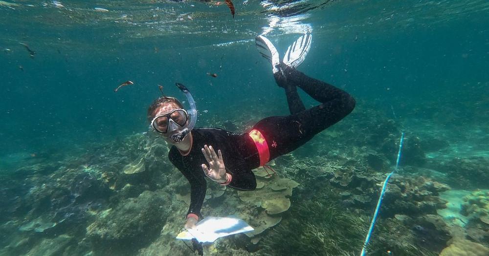 deniz biyolog rianne laan mercan kreş thanda adada yukarıda