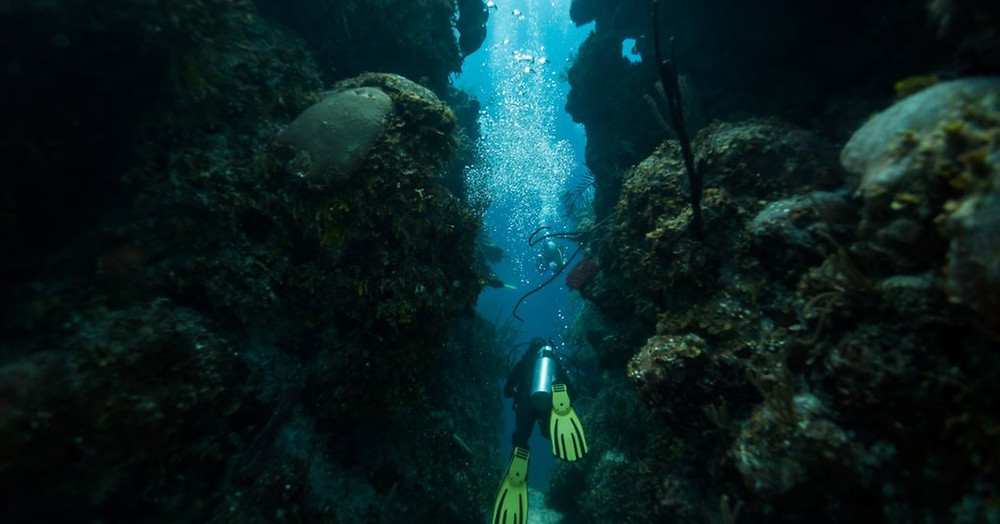 Scuba diver mavi delikten yüzüyor