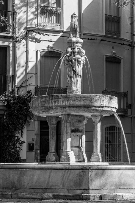 Noir et blanc sur la fontaine