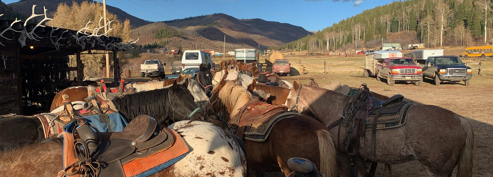 8 Welder Ranch Corrals