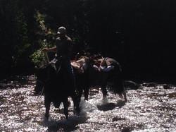 9 12 packing elk on river