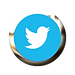 Twitter Logo With FX.png